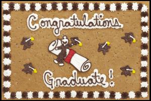 S3010P_GraduateDiploma