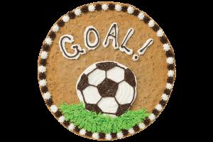 S3505_Goal