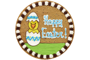 HS2252_ChickInEgg