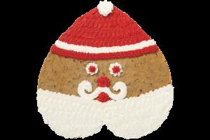 Santa #HW2801